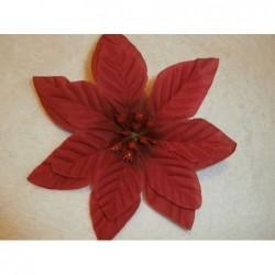 Květ Poinsenttia - Přízdoba