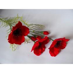 Máky květina
