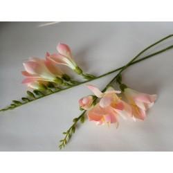 Frézie - přízdoba růžová