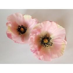 Máky - květ, velký