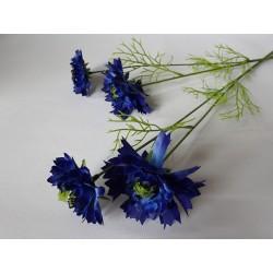 Chrpa květina