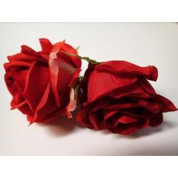 Růže květ - Sára  - 7c